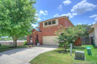 Boerne Single Family Home New: 27805 Sonoma Ambre