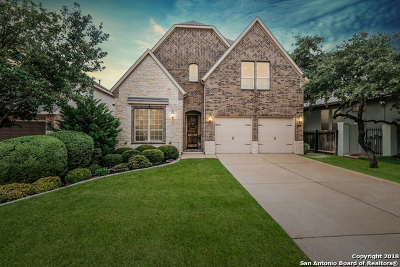 Boerne Single Family Home New: 8627 Dana Top Dr