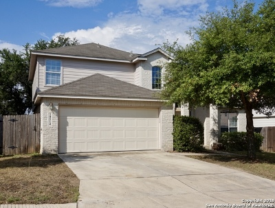 Helotes Single Family Home New: 10514 Cosmos Canyon