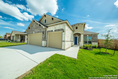 New Braunfels Single Family Home New: 845 Gray Cloud
