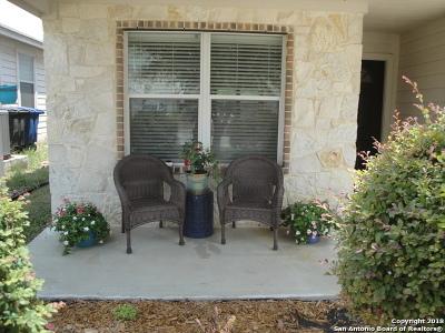 San Antonio Single Family Home New: 3626 Alpine Aster