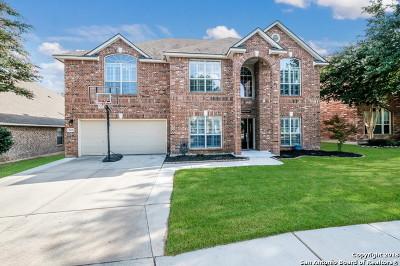 San Antonio Single Family Home New: 2606 Trinity Pass
