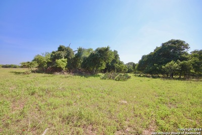 Floresville TX Farm & Ranch New: $299,000
