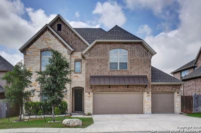 San Antonio Single Family Home New: 2218 Cortona Mist