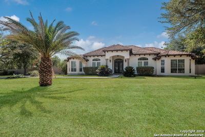 San Antonio Single Family Home New: 15607 Tamaron Pass