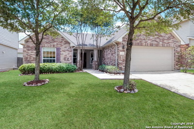 Bexar County, Medina County Single Family Home Back on Market: 11718 Oak Park Glen
