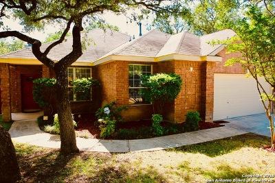 San Antonio Single Family Home New: 22807 Sabine Smt