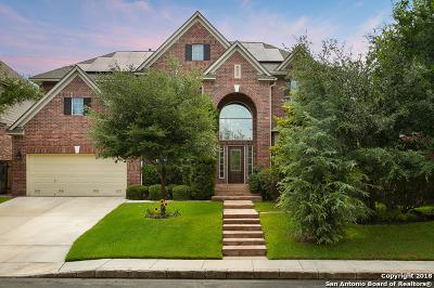 San Antonio Single Family Home New: 18710 Danforth Cove