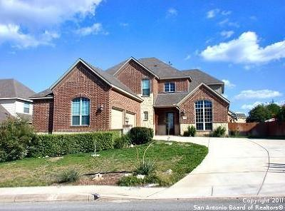 Bexar County Single Family Home Active Option: 30 Sable Valley