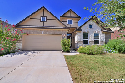Bexar County Single Family Home For Sale: 11638 Kristidawn