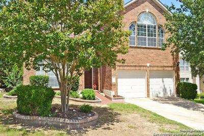 San Antonio Single Family Home New: 24627 Arrow Canyon