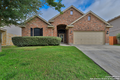 Cibolo Single Family Home New: 312 Dove Wing