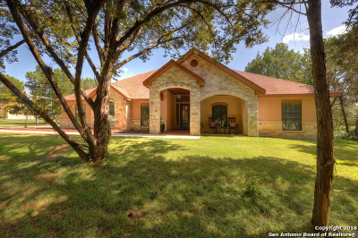New Braunfels TX Single Family Home New: $500,000