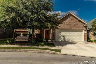 San Antonio Single Family Home New: 9318 Wind Talker