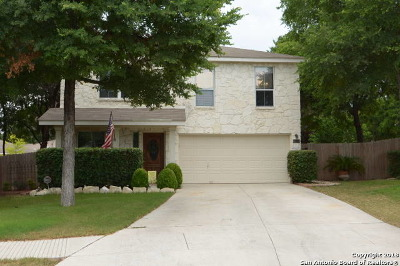 San Antonio Single Family Home New: 15714 Spruce Stream