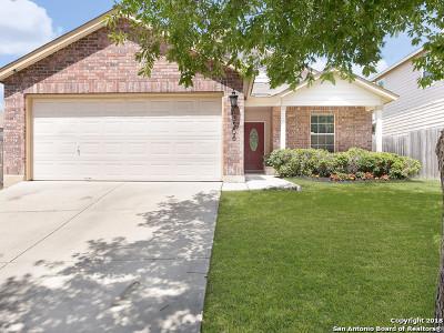 San Antonio Single Family Home New: 13206 Camino Carlos