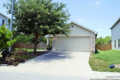 San Antonio Single Family Home New: 12334 Mountain Pne