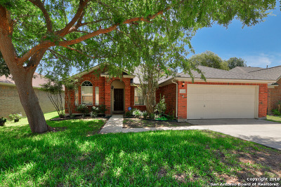 San Antonio Single Family Home New: 11322 Fair Hollow Dr