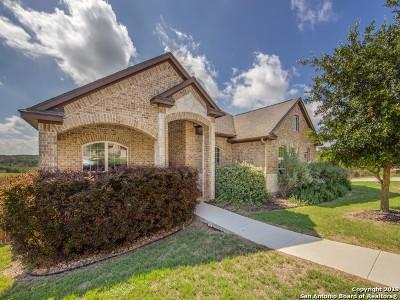 San Antonio Single Family Home New: 25622 Rabbitbrush