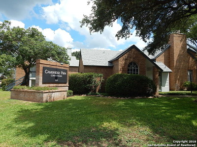San Antonio Condo/Townhouse New: 11311 Sir Winston St #708