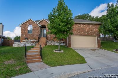 San Antonio Single Family Home New: 25811 Santolina