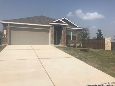 New Braunfels TX Single Family Home New: $247,499