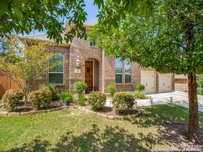 San Antonio TX Single Family Home New: $375,000