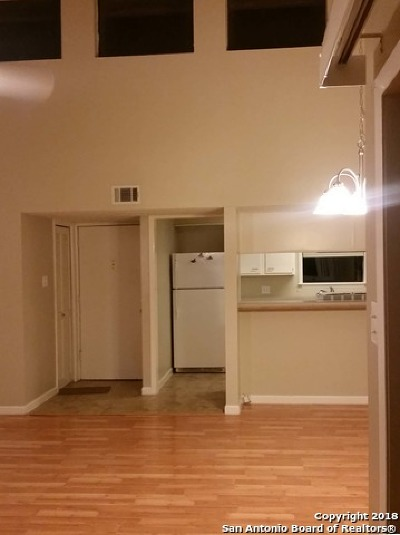 San Antonio Condo/Townhouse New: 3843 Barrington Dr #252N
