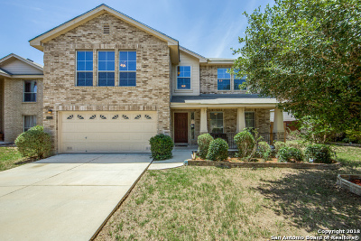 San Antonio Single Family Home New: 11022 Mustang Spring