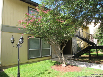San Antonio Condo/Townhouse New: 100 Lorenz Rd #1001