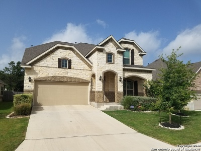 Jbsa Ft Sam Houston Single Family Home New: 4831 Palma Nova St