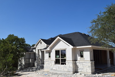 New Braunfels TX Single Family Home New: $439,000