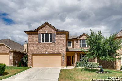 San Antonio Single Family Home New: 24646 Buck Creek