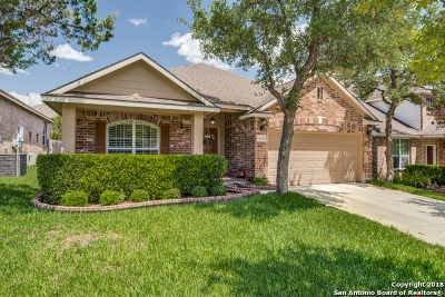 San Antonio Single Family Home New: 26418 Walden Oak