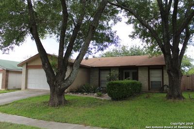 San Antonio Single Family Home New: 4826 Buckwheat St