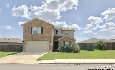 San Antonio Single Family Home New: 6523 Luckey Tree