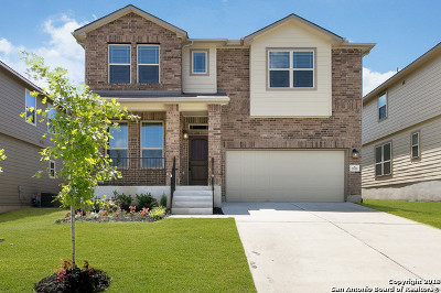 New Braunfels Single Family Home New: 2915 Nicholas Cove