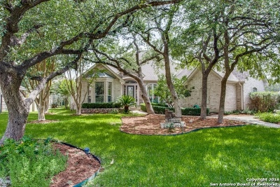 San Antonio Single Family Home New: 2006 Winding View
