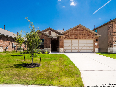 Single Family Home New: 13411 Flora Springs