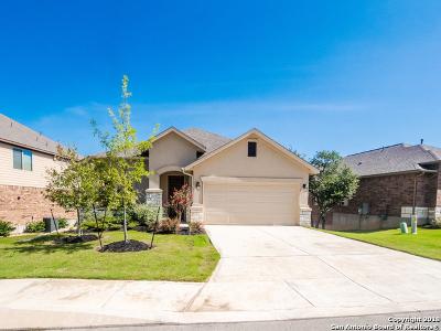 San Antonio TX Single Family Home New: $304,900