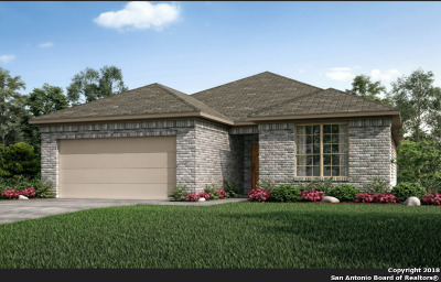 San Antonio TX Single Family Home New: $262,725