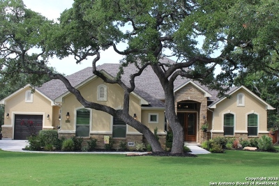 Fair Oaks Ranch Single Family Home New: 30328 Setterfeld Circle
