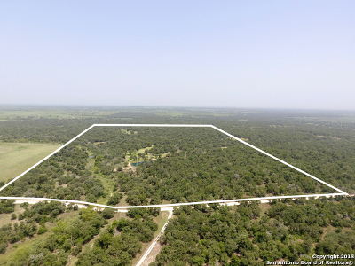 Wilson County Farm & Ranch For Sale: County Road 437
