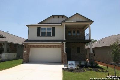 San Antonio TX Single Family Home New: $257,820