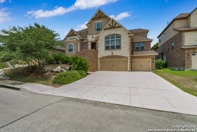 San Antonio Single Family Home New: 3119 Spider Lily