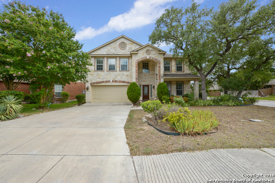 Helotes Single Family Home New: 8922 Saxon Forest