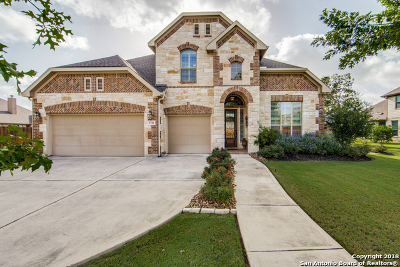 San Antonio Single Family Home New: 9718 Rosemire Way