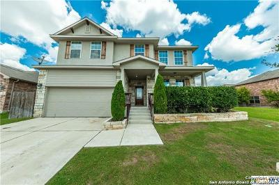 New Braunfels Single Family Home New: 338 Posey Pass