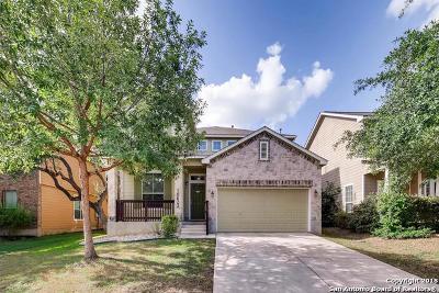San Antonio Single Family Home New: 10623 Axis Crossing