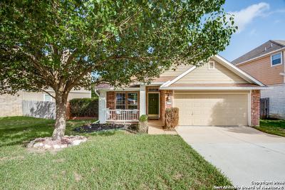 San Antonio Single Family Home New: 119 Eagle Vail